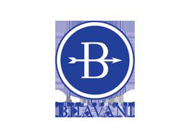 Bhavani Industries India LLP