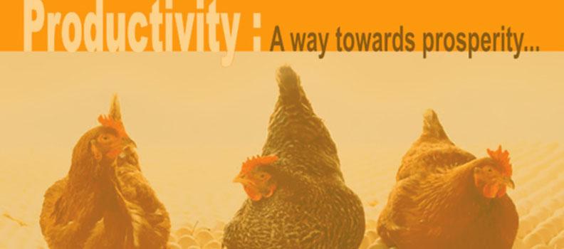 Productivity: A way towards prosperity